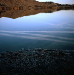 (Andrs Medina) Tags: 120 6x6 tlr film water analog mediumformat reflections landscape photography spain agua natural slide nobody cielo simplicity transparency fujifilm rap laguna minimalism fujichrome e6 deserted reflejos reserva relections aranjuez nadie diapo yashicamat124g carrizo astia100f humedal fujiastia100f flotando reflejado autaut mardeontigola andresmedina