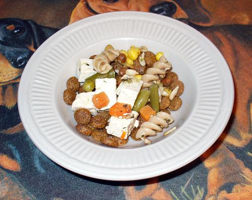 2009-10-23 - Green Vegan Dog Food - 0001