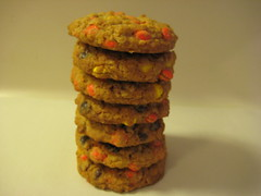 Oatmeal Mini Pieces Cookies