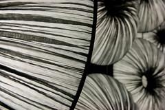 c'è un velo di luce (gufino (out for awhile)) Tags: italia grigio milano ombra bianco lombardia nero luce spazio salonedelmobile fuorisalone tessuto lampade