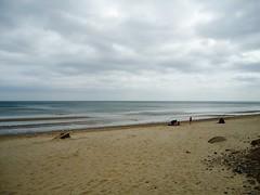 DSC02597 (technogran) Tags: beach driftwood sands pepples reighton