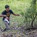 Asociación Panamericana para la Conservación APPC Gamboa Wildlife Rescue pandemonio 2017 - 06