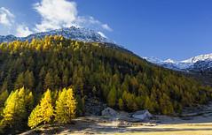Monti autunnali (cesco.pb) Tags: passodelsempione simplonpass switzerland svizzera alps alpi autumn autunno canon canoneos60d tamronsp1750mmf28xrdiiivcld montagna mountains