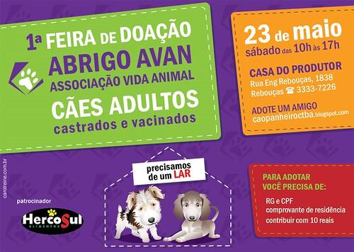 Cães Doação