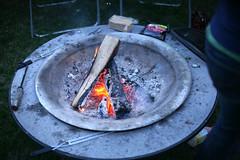backyard bbq - fire pit