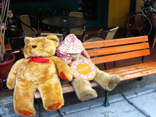 晒太陽的熊
