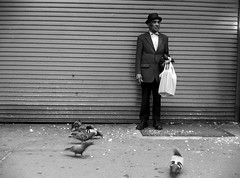 """The Man Who Fed the Pigeons"" (Sion Fullana) Tags: blackandwhite newyork blancoynegro manhattan pigeons streetphotography allrightsreserved newyorkers iphone urbanshots urbannewyork scenesfromthestreet heposedforme iphonephotography iphoneshots iphoneography oldmanwithahat iphoneographer sionfullana oldlatinman hungryorvainpigeons withasuit menonthestreets purestreetphotography throughthelensofaniphone mobilephotogroup"