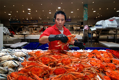 Crabs On Ice  4am Project (Bruce Kerridge) Tags: life red sea fish cooking shop retail dawn market sydney cook crab australia explore lobster seafood crayfish 4am soe abigfave platinumphoto 4amproject