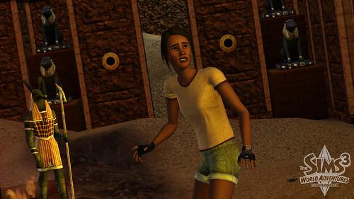 Sims 3 Expansion Pack 3784178525_d9d056494d
