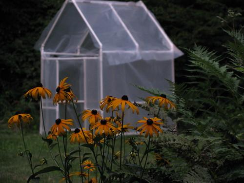 Sara's Greenhouse