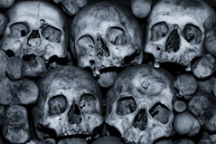 There's always someone worse off than you (Stevacek) Tags: monochrome skulls skeleton skull ossuary bones charnelhouse bone bonehouse slann