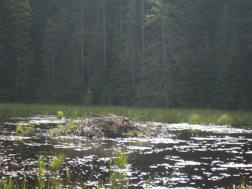 Canada (2009-09-18) - 002