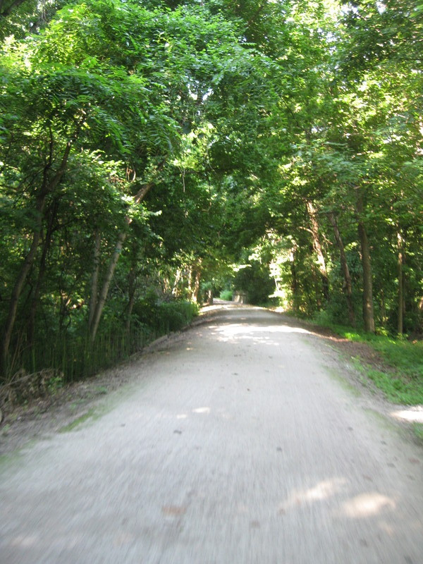 Katy Trail Path