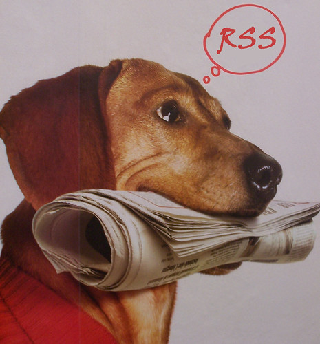 Newspaper dog thinking RSS by stylianosm, on Flickr