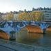 Pont Louis Philippe - Paris (France)