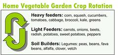 crop rotation plans