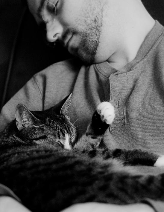 Cat Nap (38/365)