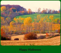 { EXPLORED} (Piscesgirl2~) Tags: autumn trees ontario canada halloween nature colors leaves greetingcard flickrdiamond diamondclassphotograper absolutelystunningscapes panoramafotografico