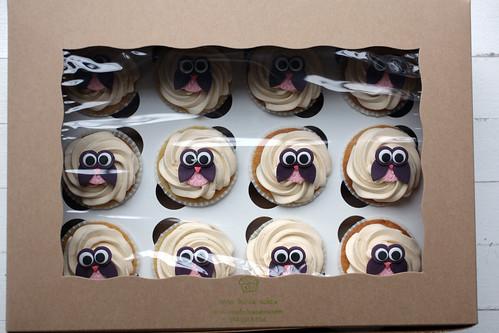 Olivia's owl cupcakes