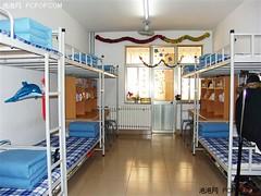 天朝最贵的房价是大学寝室