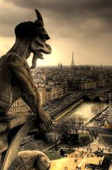 Gargola på Notre Dame i Paris