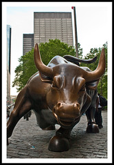 Charging Bull by kdinuraj, on Flickr