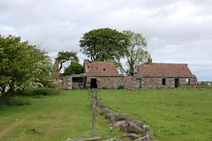 West Park, Peat Inn (Brian..Corr) Tags: park west stone inn sandstone sheep fife farm cottage ruin peat whinstone