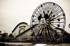 Welcome to Paradise (dogwelder) Tags: california june mickeymouse ferriswheel rollercoaster anaheim zurbulon6 2009 californiascreamin disneyscaliforniaadventure zurbulon mickeysfunwheel formerlythesunwheel