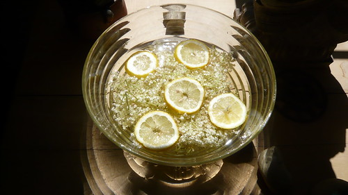 elderflower lemonade 3