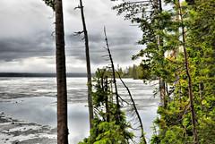 Ice on Lewis Lake (NancelAnders) Tags: lake mountains beauty landscape scenery yellowstonenationalpark yellowstone hdr nikond90 dynamicphotohdr