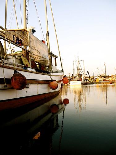 reflection water sailboat boat