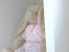My Rabbit (Tasmin_Bahia) Tags: pink rabbit bunny beads pretty top buttons fluffy skirt bracelets tones