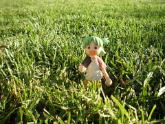 Dando un paseo por el campo (Lnovell7) Tags: toy toys actionfigure manga figure palmademallorca yotsuba parcdelamar revoltech jfigure