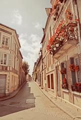 (Sofia Ajram) Tags: flowers france town honfleur nikond80 sofiaajram