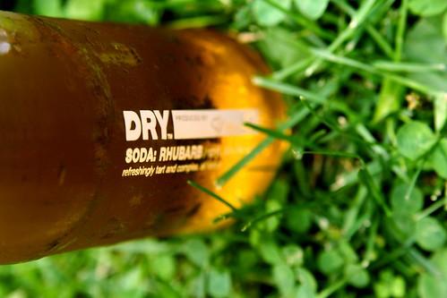 rhubarb soda, in the grass