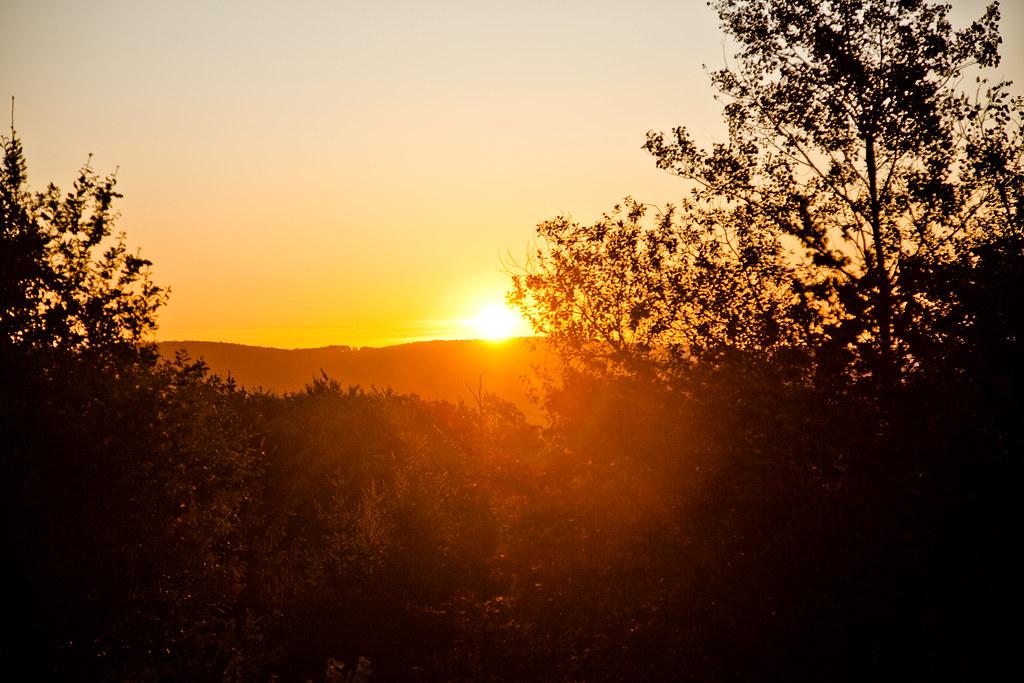 German Sunrise
