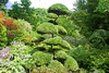 Parc Floral (Slybacon) Tags: trees france floral garden brittany parc fougeres awesometrees