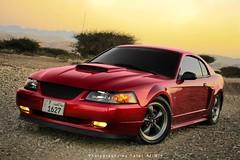 Ford Mustang GT (Talal Al-Mtn) Tags: red ford canon photography 1 shot d kuwait mustang gt rims oman 450 mustanggt q8 mach 450d inoman talalalmtn bytalalalmtn