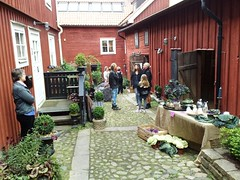 Gutenberg House back gardens in Mariestad #1