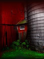 Secret Window (Jersey Rich) Tags: nikon 1001nights mb ineffable d80 flickraward nikonflickraward