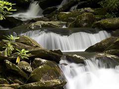 Water (tord75) Tags: mountains water waterfall smokey gatllinburg