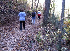 Hiking with work peeps 2009-11-07 033 (Little Texas, South Carolina, United States) Photo