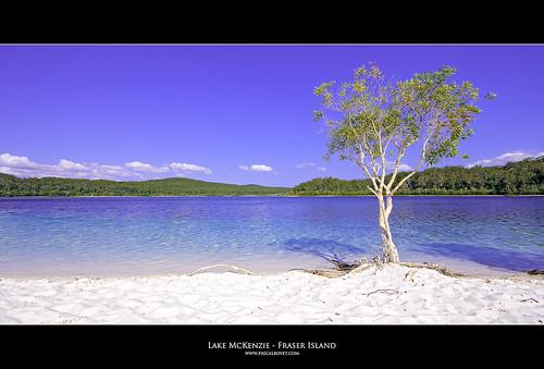 Lake McKenzie - Fraser Island - Australia