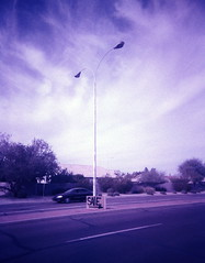 Lomography as bricolage (kevin dooley) Tags: road street camera blue arizona sky cloud southwest art film lamp phoenix car sign analog 35mm lens photography photo lomo xpro lomography crossprocessed ray fuji purple desert sale cam philosophy daily plastic velvia fujifilm casual normal everyday avenue chandler cheap mundane available bricolage phx toycam routine trashcam 100iso valleyofthesun kyrene tempecamera cloudshot gilasprings