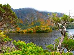IMG_5923 (billdog) Tags: australia tasmania tassie downunder
