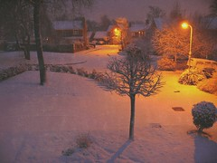 Snowy Street (Tasmin_Bahia) Tags: road trees houses winter england snow cold detail outside outdoors pretty peace peaceful lampost simple