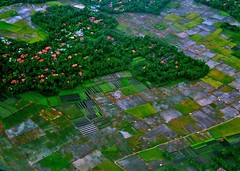 Leaving Jakarta 02 (giovanni paccaloni) Tags: forest indonesia java asia jakarta aerials airviews airphotography giava