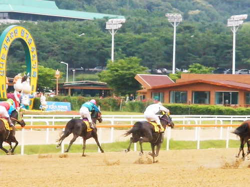 6.21.2009 - Seoul Racecourse