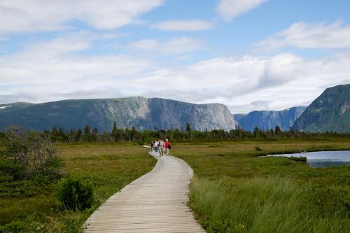 Discovering Newfoundland