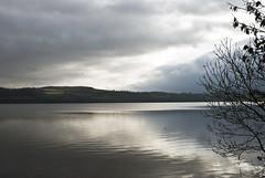 Scotland -------- Loch Lomond (Ben124.) Tags: trees winter light sky lake clouds scotland lochlomond
